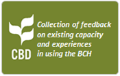 Collection of feedback on existing capacity and experiences in using the BCH