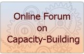 Online forum on capacity-building