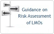 Guidance on RA of LMOs