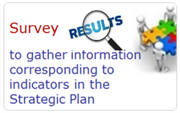 Survey to gather information corresponding to indicators in the Strategic Plan