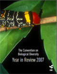 Year in Review 2007