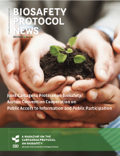 Biosafety Protocol Newsletter no. 13